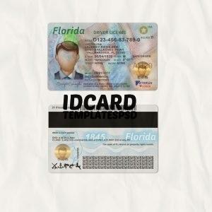 Florida drivers license templates psd
